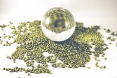 mung bean ball