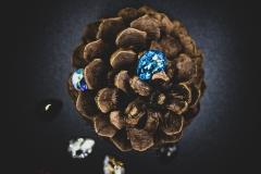 sparkle seeds 3