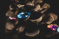 sparkle seeds 1