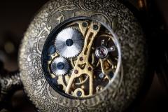 skeleton watch 2