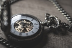 skeleton watch 4